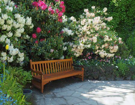 Garden bench surrounded by lush spring vegetation