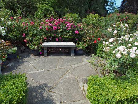 Concrete bench in the rose garden