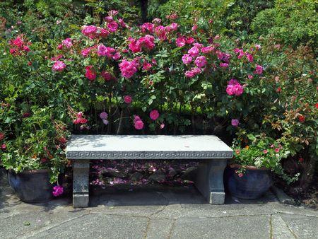 バラ園でコンクリート ベンチ