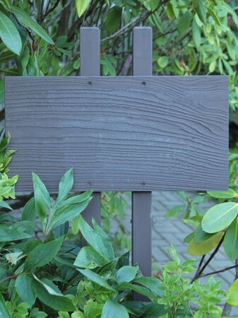 Signpost in the middle of foliage, blank signboard Banco de Imagens