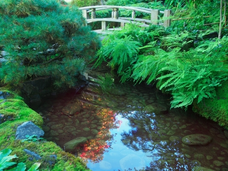 ponte giapponese: Ponte sul laghetto in giardino giapponese tradizionale desing Archivio Fotografico