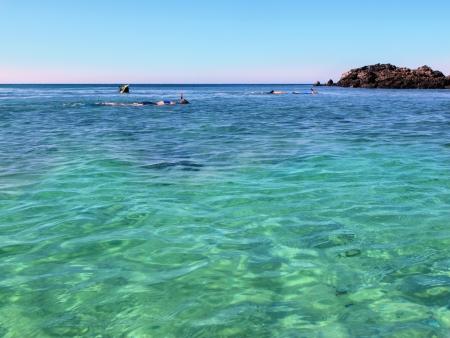 수영 따뜻한 열대 바다 바다에서 스노클링 스톡 콘텐츠 - 17102878