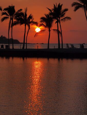 Idyllic red tropical sunset with palm trees and reflection in the ocean photo