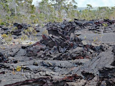 Kilauea volcano,lava flow and lava trees of 1974 on Big Island, Hawaii