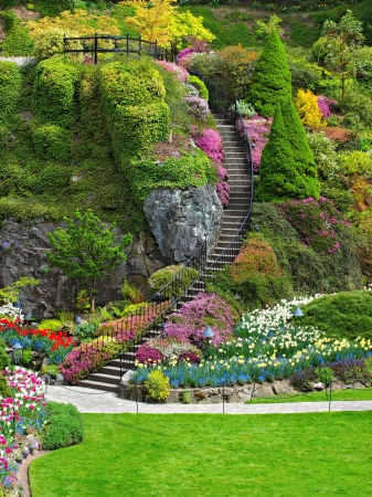 Ladder in Sunken Garden of Butchart Gardens, Victoria, British Columbia