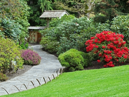 shurb: Walkway in the park by the red blooming rhododendron Stock Photo