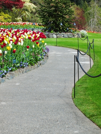 shurb: Walkway in the spring gardens among flowerbeds with tulips Stock Photo