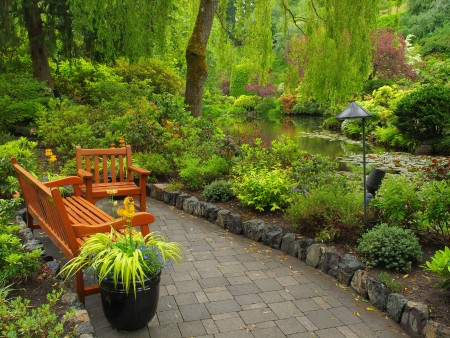 Garden benches over the pond in the fall during rainy weather