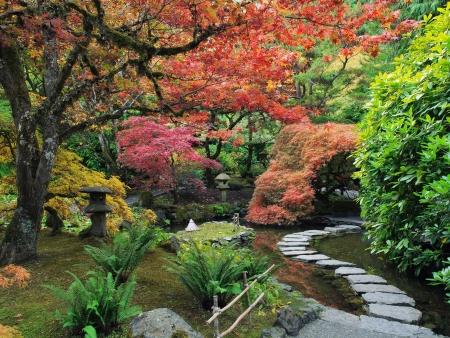 Stapstenen Arcoss de vijver in de Japanse tuin te midden van de herfstkleuren
