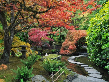 Stepping stones arcoss the pond  in the Japanese Garden amidst autumn colors