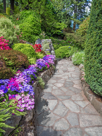 shurb: Walkway in the spring gardens among flowerbeds with dausies