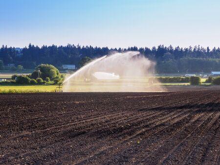 irrigation equipment: Irrigation equipment watering freshly seeded field