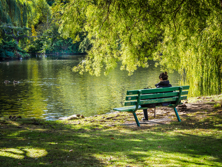 Woman sitting on a bench overlooking the lake, under weeping willow