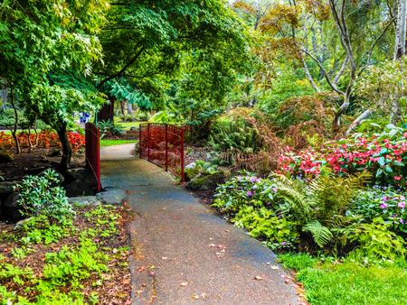 Walkway in the public Beacon Hill Park, Victoria BC, Canada Stock fotó