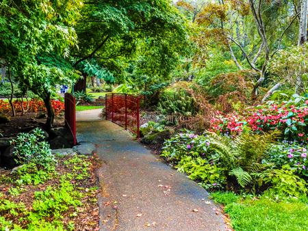 Walkway in the public Beacon Hill Park, Victoria BC, Canada Фото со стока