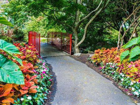 victoria bc: Walkway in the public Beacon Hill Park, Victoria BC, Canada Stock Photo