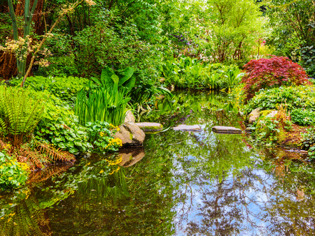 Stepping stones cross the pond surrounded by lush springtime greenery