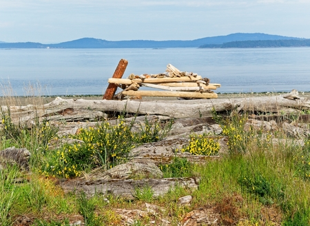 Rocky shores with driftwood strewn around on the Island View Beach in Victoria, Vancouver Island, British Columbia