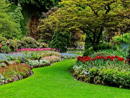 Lush springtime garden with lawns, tulips, and walkways between flower beds
