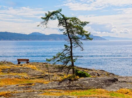 Bench at the shore, public Ruckle Provincial Park shoreline on the Salt Spring Island, largest of the Gulf Islands in British Columbia 写真素材