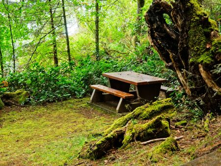 Picnic table in public Ruckle Provincial Park shoreline on the Salt Spring Island, largest of the Gulf Islands in British Columbia