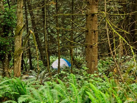 Tent in the forrest, public Ruckle Provincial Park shoreline on the Salt Spring Island, largest of the Gulf Islands in British Columbia