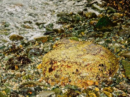 Rocky shore of the public Ruckle Provincial Park shoreline on the Salt Spring Island, largest of the Gulf Islands in British Columbia