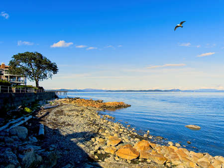 Spectacular shore of Sidney BC, Vancouver Island, Canada