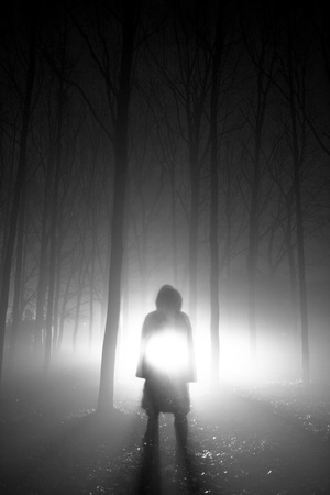Vertical shot of a person standing in the foggy woods with light beams shining behind him photo