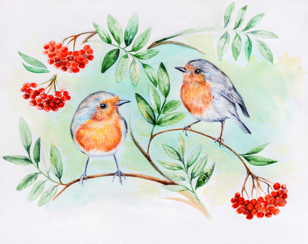 two birds: Watercolor painting. Two birds on a branch with berries.