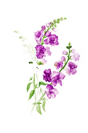 variations: Watercolor painting of flower branch with flowers, color variations Stock Photo