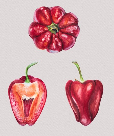 Watercolor set of three red bell peppers Stock Photo