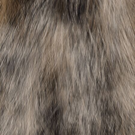 strands: Digitally created animal fur texture with different colored hair strands