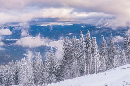 아름 다운 겨울 저녁 동안 Dragobrat 산,대로, 우크라이나에서에서보기