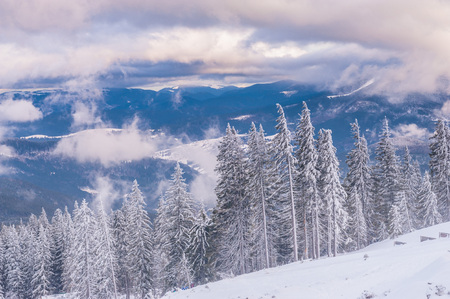 View from Dragobrat mountain, Carpathian, Ukraine during a beautiful winter evening