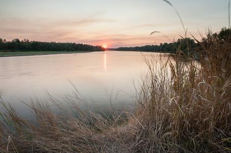 우크라이나에서 데스 나 강 일몰입니다. 백그라운드에서 석양 강 해안을 덮고 오래 된 마른 갈 대.