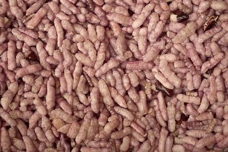 Fried rice, purple.