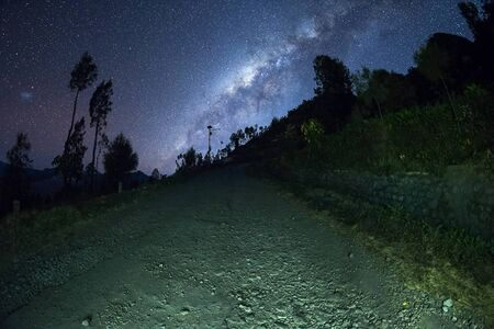 Milky way galaxy stars shining in the sky at night above pine trees in Bromo Semeru National park, Java Indonesia