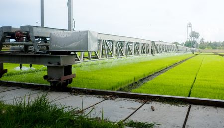Intelligent Technology Smart Farming, Modern agriculture management for rice paddy field in Thailand Фото со стока - 103031480