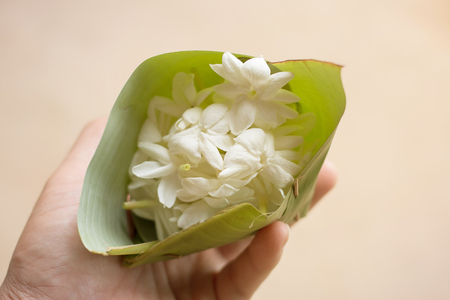 Give with heart: Arabian Jasmine in banana leaf cup