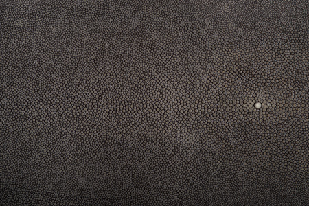 Stingray leather, steel gray color, leather for swatches