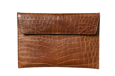 color skin brown: Exotic leather bag for Pad, hide, skin in brown color