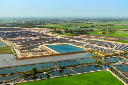 solar farm: Solar farm, solar panels aerial photography from Thailand