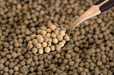 Whole White Pepper on Old  Brass Spoon