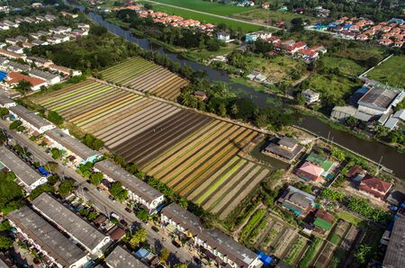 Vegetable Farming, Agriculture in Thailand Aerial Photography