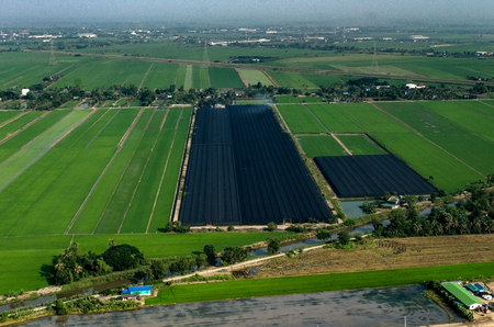 Organic Farming, Agriculture in Thailand Aerial Photography