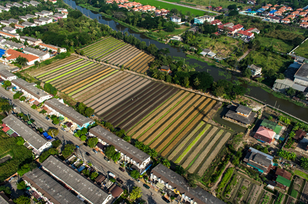 Organic Vegetable Farming, Agriculture in Thailand Aerial Photography