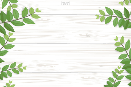 Wood plank pattern and texture with green leaves for natural  background. Abstract background for product presentation. Realistic vector illustration.