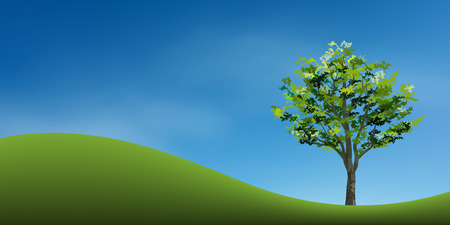 Tree on green grass hill with blue sky. Abstract background park and outdoor for landscape idea. Use for natural article both on print and website. Vector illustration.
