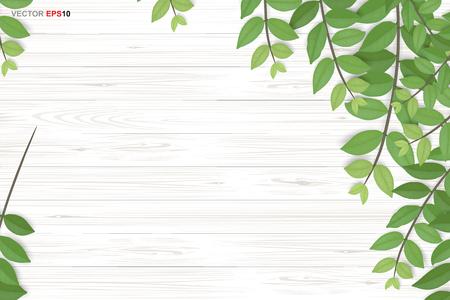 Holzbeschaffenheitshintergrund mit grünen Blättern. Realistische Vektorillustration.